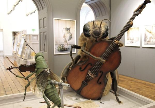 Tim Walker Storyteller Exhibition Somerset House